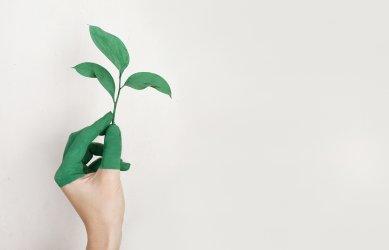 Dotace na posílení biodiverzity