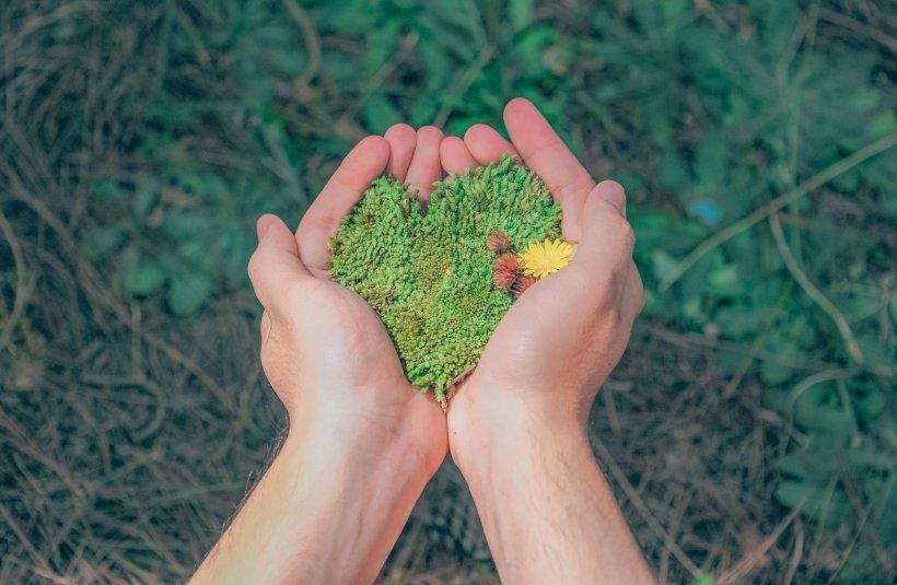 Dotace na posilování biodiverzity