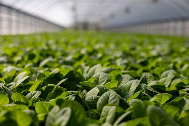 Webinář: Dalších 15 minut pro zemědělce